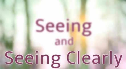 seeing_and_seeing_clearly